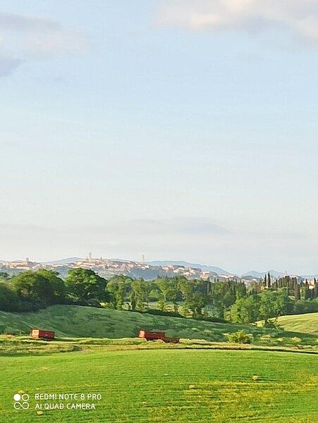 Villa Poggio al Sole, indipendente in biofarm, 8/9pax con piscina uso esclusivo, Ferienwohnung in Bagnaia