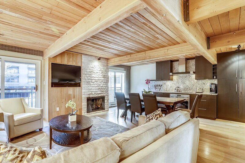 Amazing, stunning, deluxe Aspen condo, holiday rental in Aspen