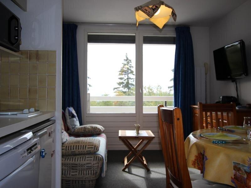 studio cabine 4 pers proche piste, casa vacanza a Laffrey