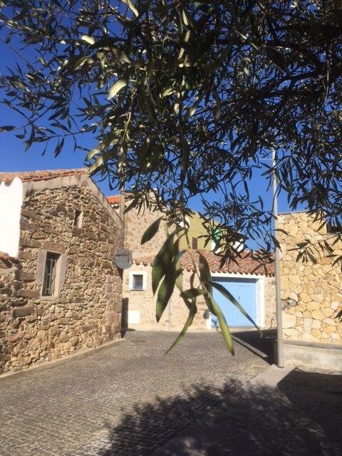 La Porta Blu – Rustic accomodation in picturesque mountain village, vacation rental in Serri