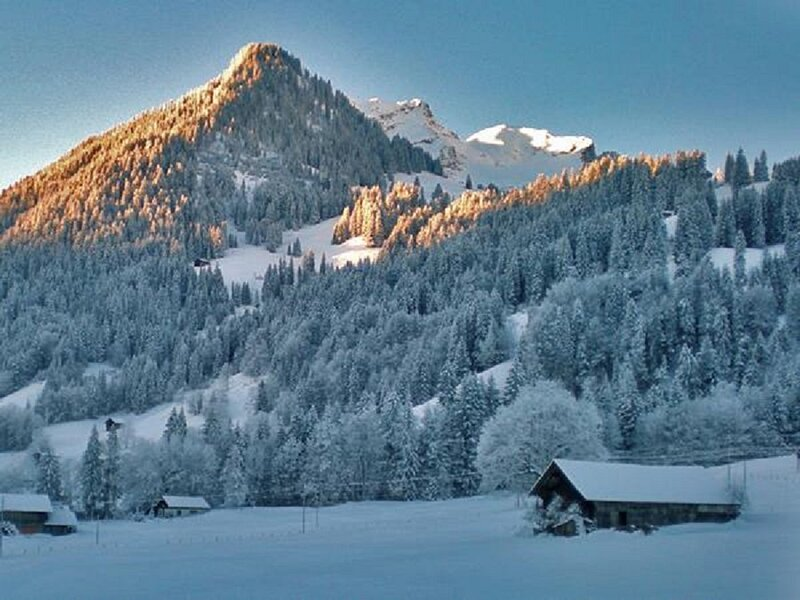TOP FLOOR GSTAAD VELVET LUXURY NEXT TO CROSS COUNTRY SKI TRAIL, holiday rental in Chateau-d'Oex
