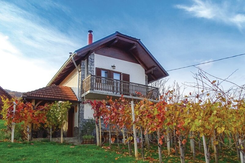 Vineyard house Bahor, holiday rental in Straza