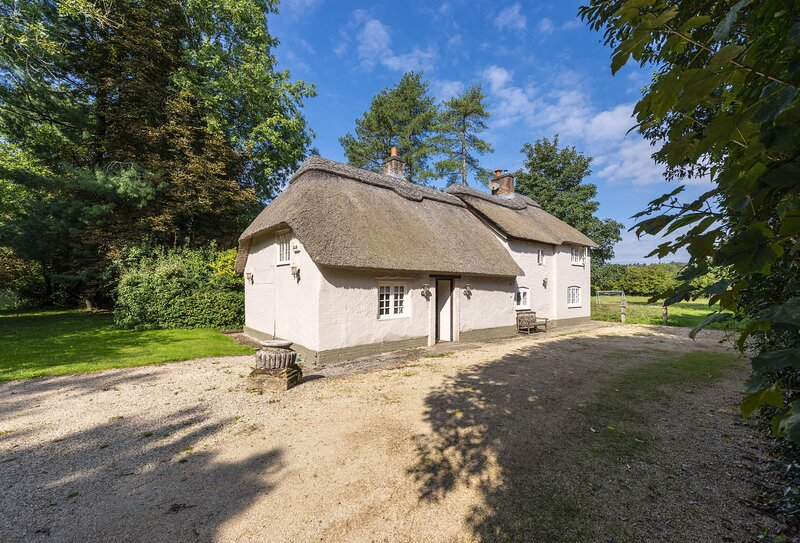 River Cottage, holiday rental in Winterborne Whitechurch