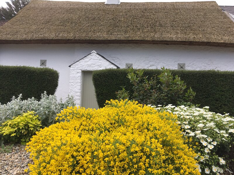 Connell's House a Unique Thatched Cottage, casa vacanza a Skerries