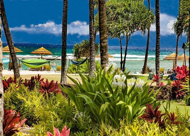 Villa ******* OceanView Turtle Bay Beachfront Legal Rental, holiday rental in Kawela Bay