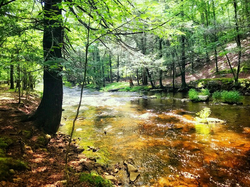 Relax in the House on the Creek!! Enjoy Fireplace, Jacuzzi, Ski, Amenities ++++ – semesterbostad i Bushkill