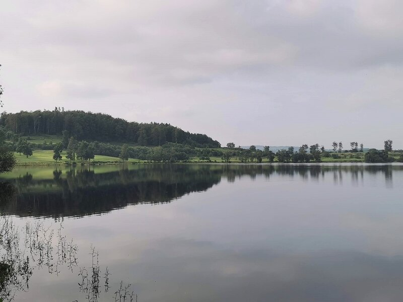 Views across Lough Muckno of Concra Wood 18 Hole Golf Course