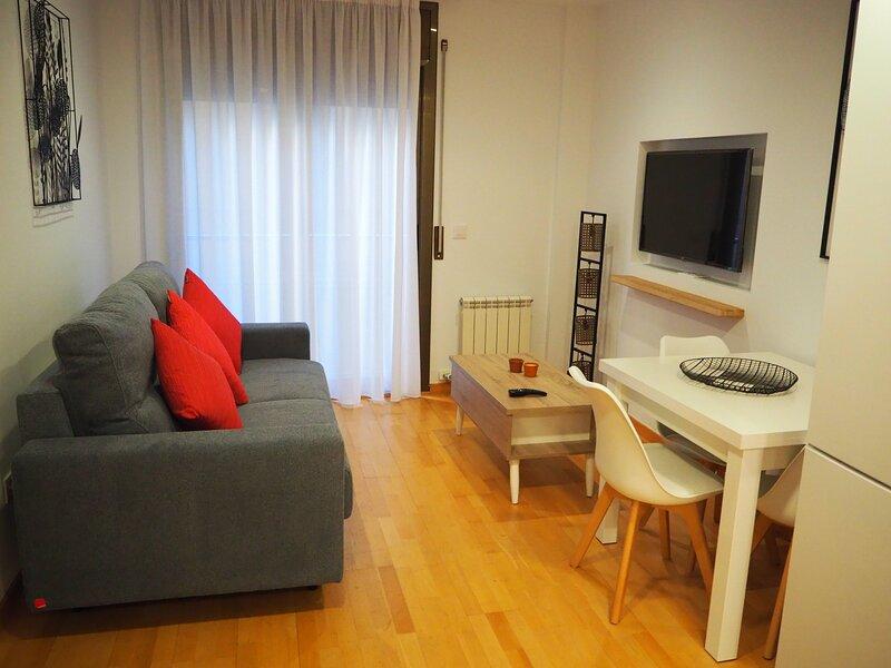 Pis modern a Girona centre amb pati, 2hab, Wi Fi, holiday rental in Sant Gregori