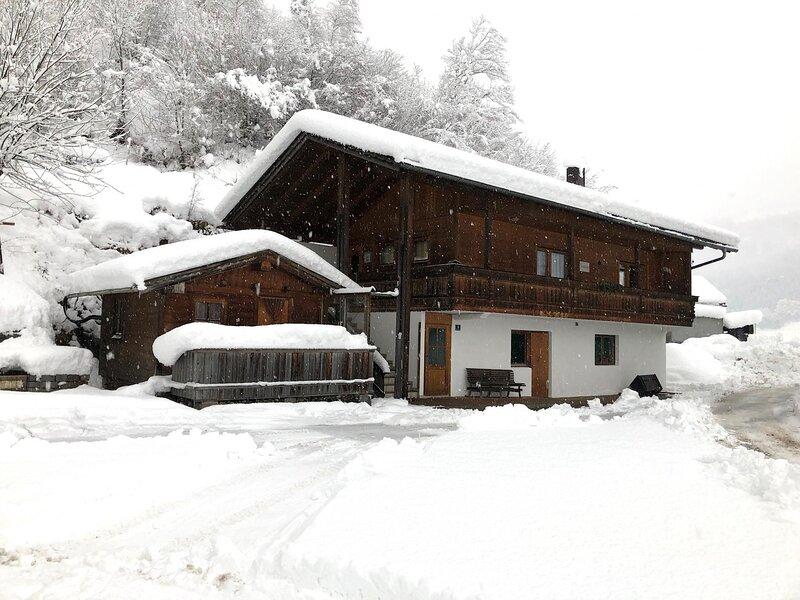 Bendl II, holiday rental in Gerlosberg