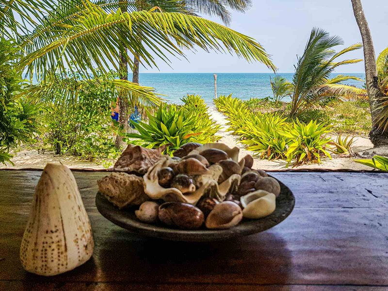 Ocean Dream Villa - Ushongo beach, vacation rental in Pangani
