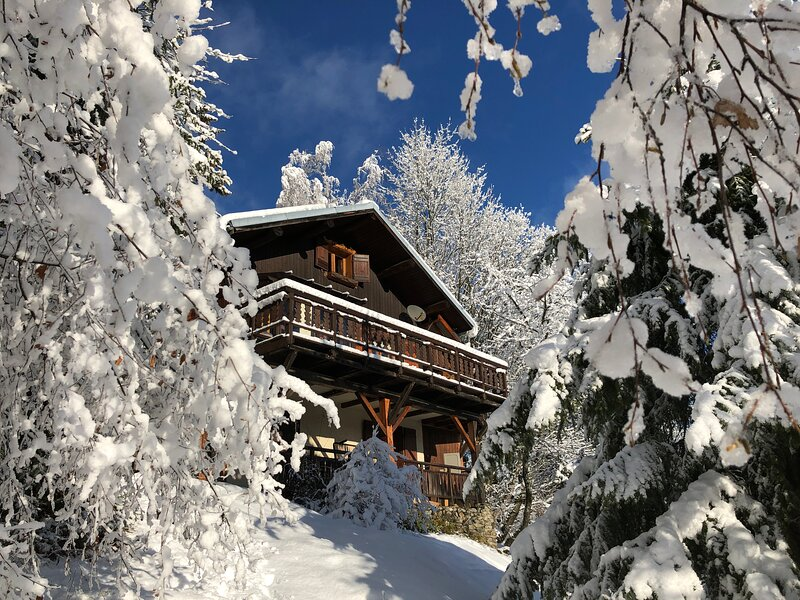 Large 2 bed apartment in a Chalet with amazing views. 2km to ski station, holiday rental in Doucy