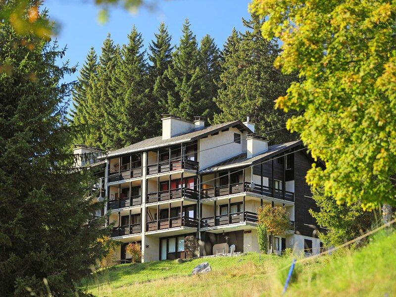 Les Petites Maraîches, location de vacances à Alpe des Chaux