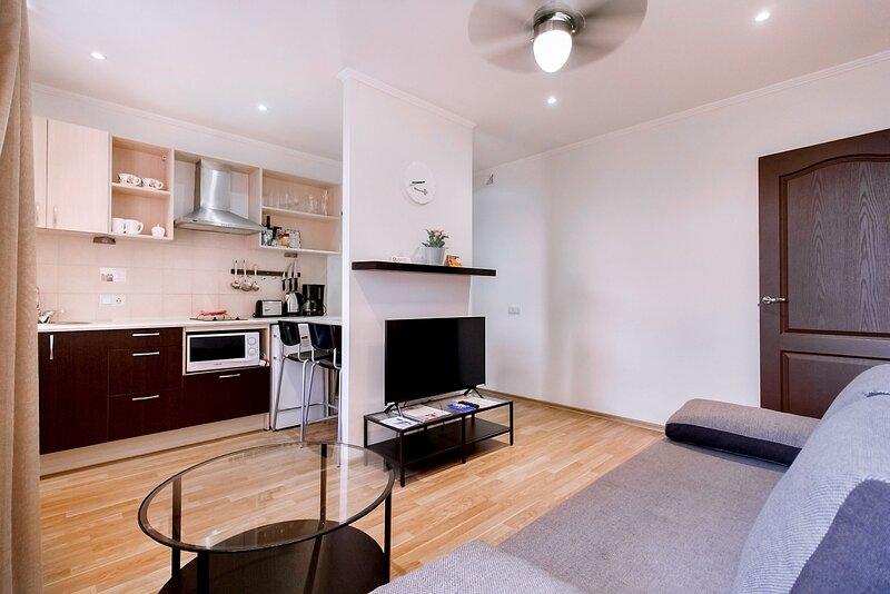 1 bedroom flat in aparthotel RIGAAPARTMENT SONADA, holiday rental in Ikskile