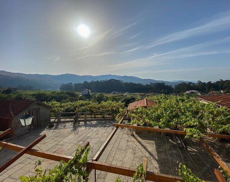 Quinta Sao Francisco - Luxury Holidays in Viana do Castelo, holiday rental in Carreco