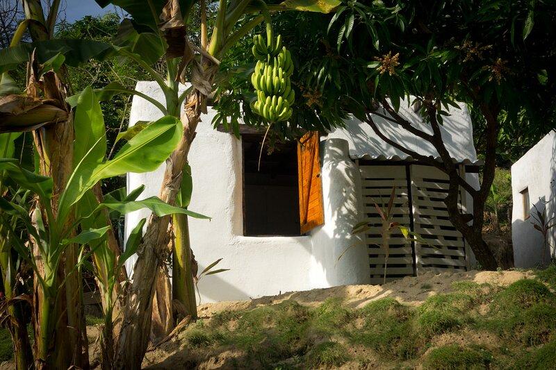 Cabaña en la selva a 4 km de Minca, holiday rental in La Tigrera