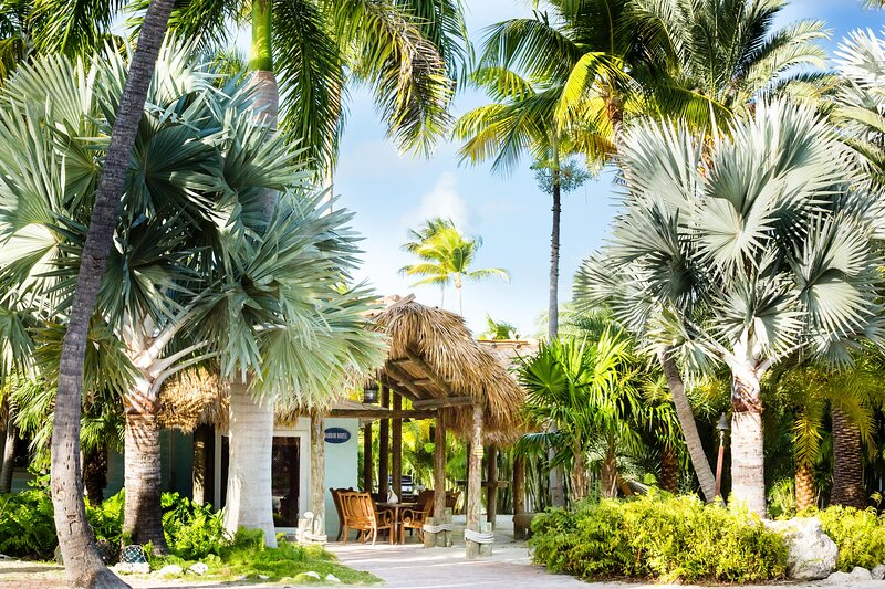 The Caribbean Resort - Harbor House, holiday rental in Matecumbe Key