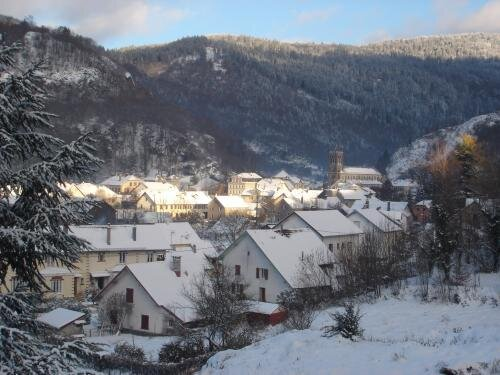 Apartment - 7 km from the slopes, holiday rental in Belfort