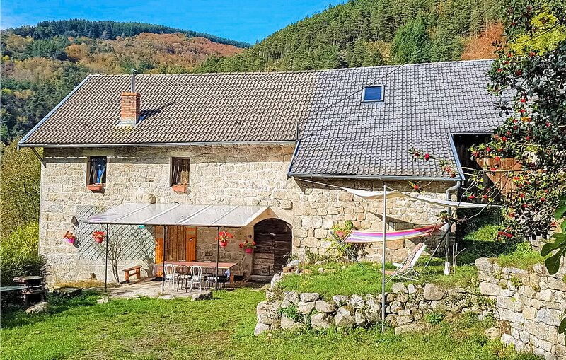 Beautiful home in Saint-Julien-d'Intres with WiFi and 3 Bedrooms (FRA173), holiday rental in Rochepaule