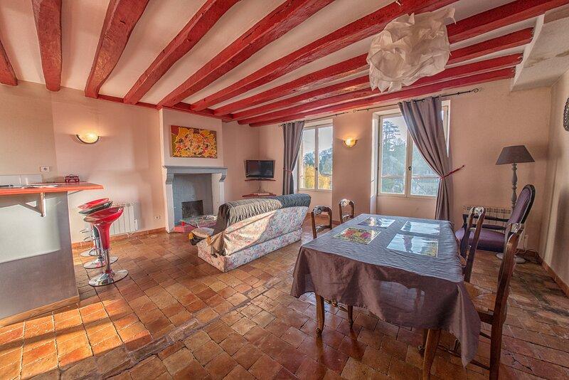 Amazing apartment with garden, holiday rental in Saint Aubin du Desert