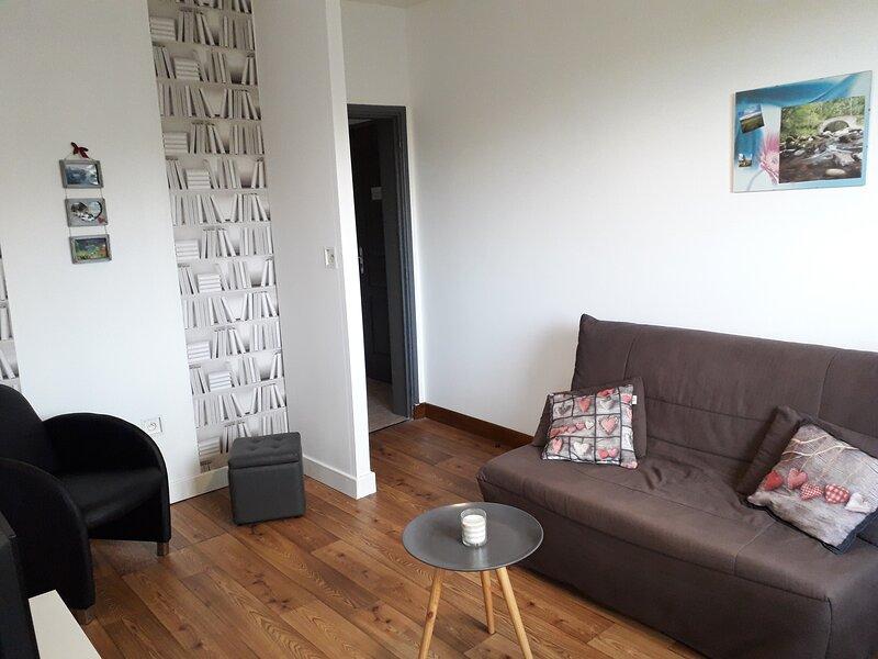 Appart n°2, classé 2 étoiles, 54m², 1er étage, casa vacanza a Saint-Nectaire