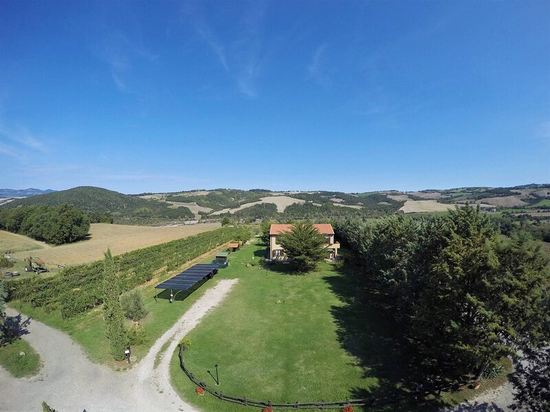 Casa Uva Agriturismo Le Selvole - Toscana, location de vacances à Querceto