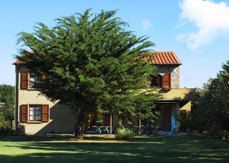 Casa Spiga Agriturismo Le Selvole - Toscana, holiday rental in Montegemoli