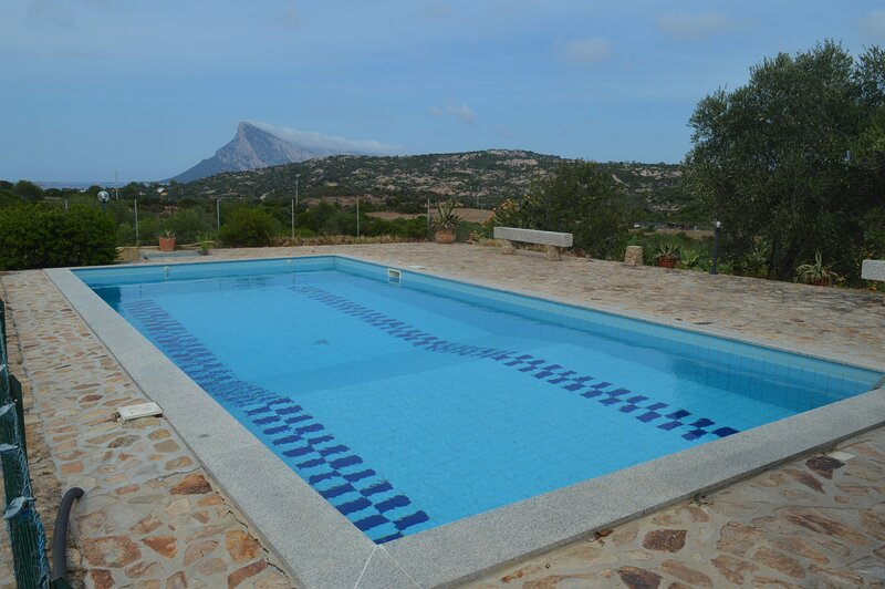 Apartment Montes with common pool in Monte Petrosu, holiday rental in Monte Petrosu