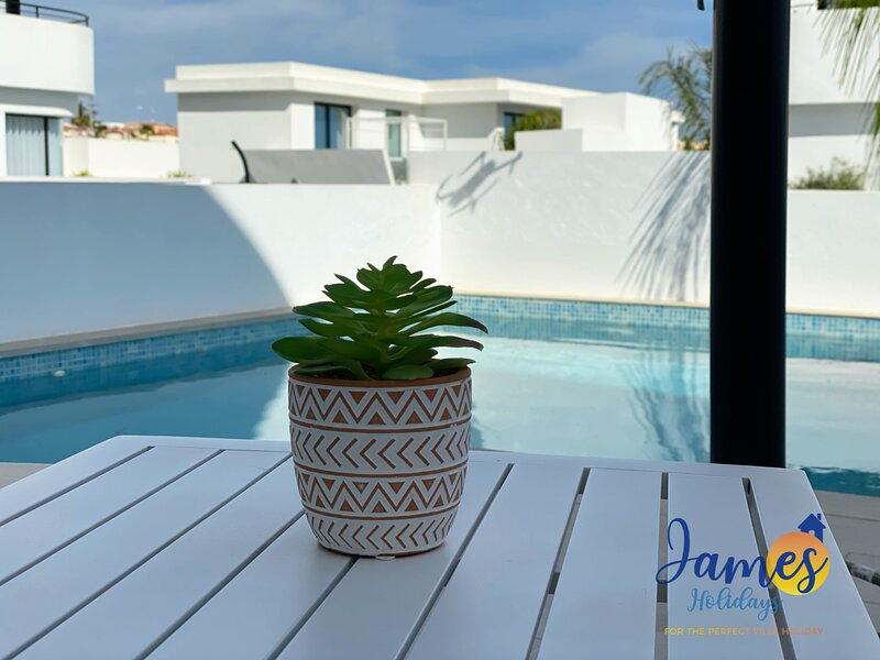 Luxurious Villa  Private Pool  La Marina Urb LM3, holiday rental in Catral