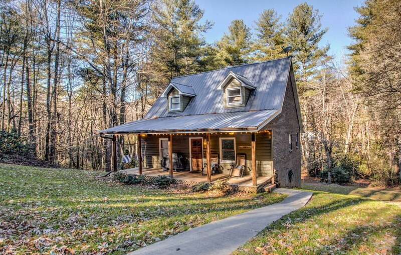 Pisgah Adventure Cottage, holiday rental in Pisgah Forest