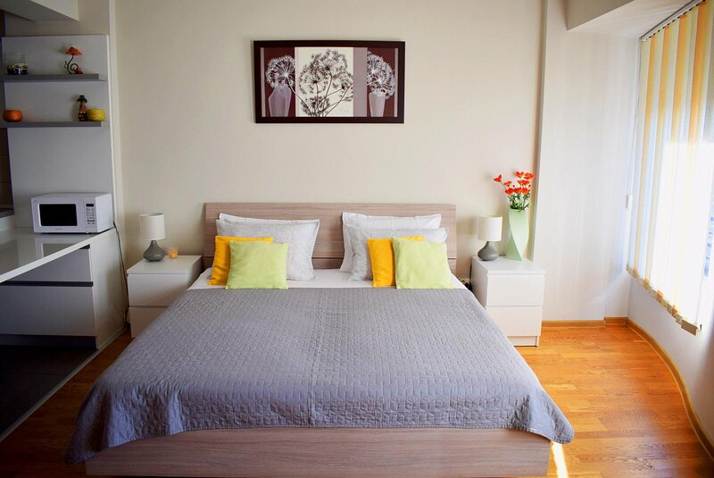Zip Studio Central Apartament Luceafarul Oradea, casa vacanza a Baile Felix