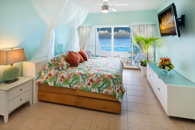 Miramar #403, Lovely Oceanfront 2 bdrm condo, North Shore, Great Snorkeling!, vacation rental in Cozumel