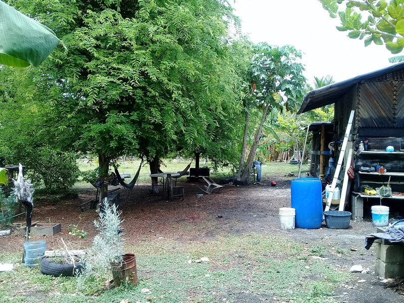 Mama Tina's Medicinal RVs Campsite &Farm, holiday rental in Black Rock