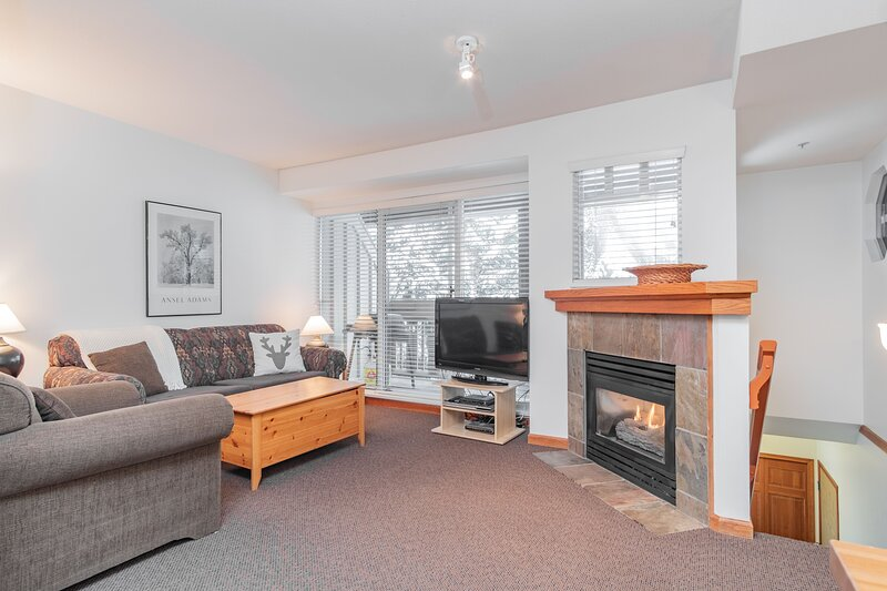 Spacious living area with a gas fireplace, pull-out sofa and Optik TV.