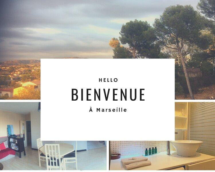Appart'N Suites - Marseille, aluguéis de temporada em Plan De Cuques
