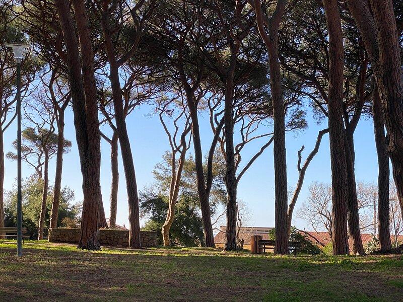 Maremma Holidays Lamarmora Apartment, aluguéis de temporada em Vignale
