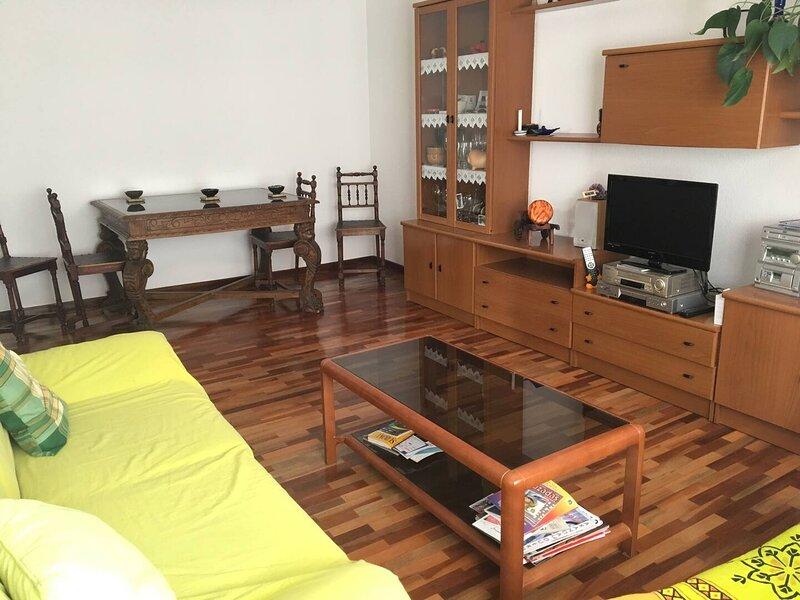 PISO BIEN SITUADO EN ARANDA, location de vacances à Langa de Duero