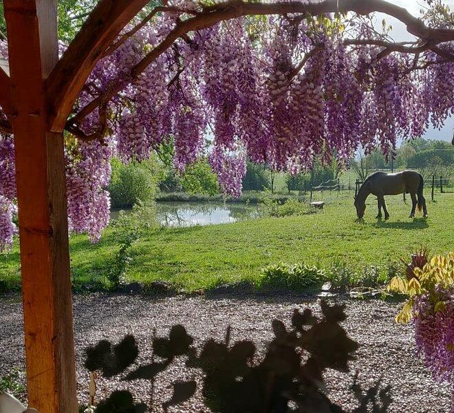 Wunderschönes Bed&Breakfast 'Le Petit Paradis', holiday rental in Cousance