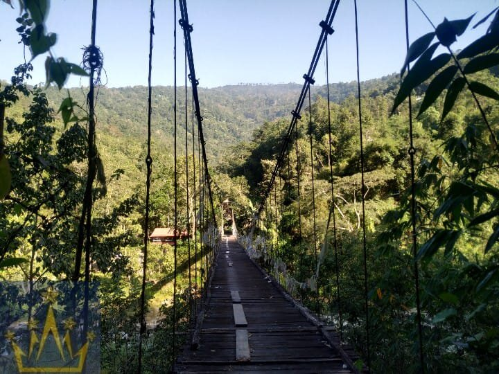 Forest Resort 30 steps to River, waterfall, hanging wooden bridge, tree house, holiday rental in Pedong