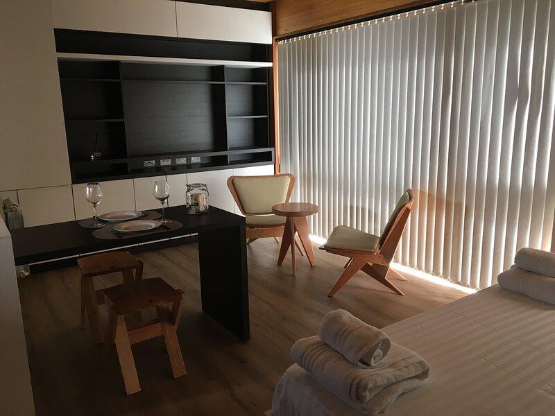 Monoambiente de categoría y diseño, súper céntrico- Edificio Vivero 2-, alquiler de vacaciones en San Martín de los Andes
