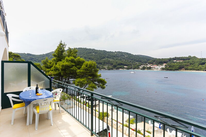 Apartments Posta - Studio with Balcony and Sea View, holiday rental in Saplunara