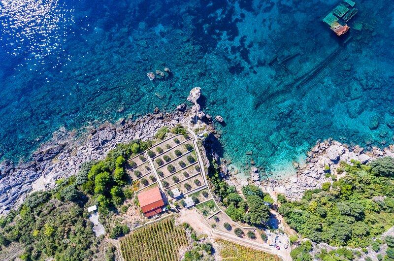 Villa Sea Edge - Three Bedroom Villa with Sea View and Private Beach, vacation rental in Stankovici