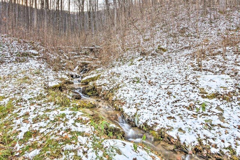 Stream Running through Property