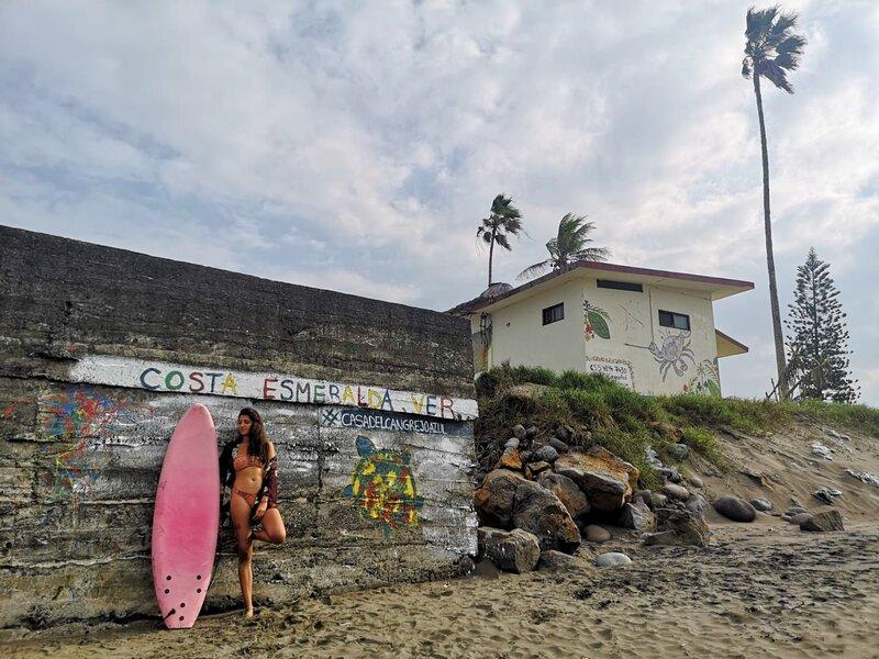 Casa Del Cangrejo Azul - La casa más cercana al mar, vacation rental in Veracruz