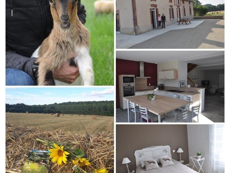 La Chevallerie, holiday rental in La Baconniere