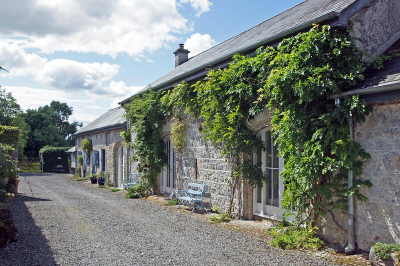 521 - Shinrone, Birr, vacation rental in Mountrath