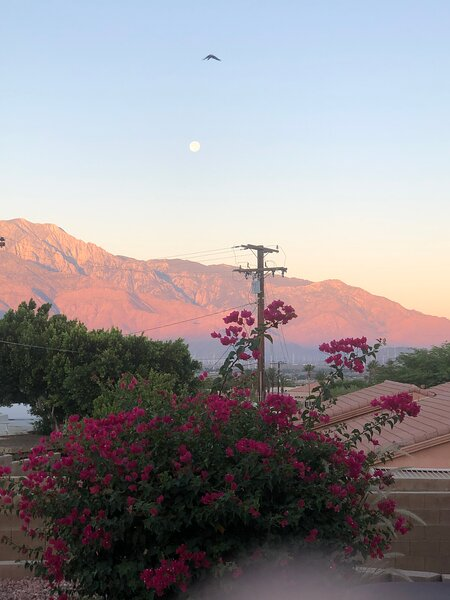 Gorgeous Mountain View from back yard