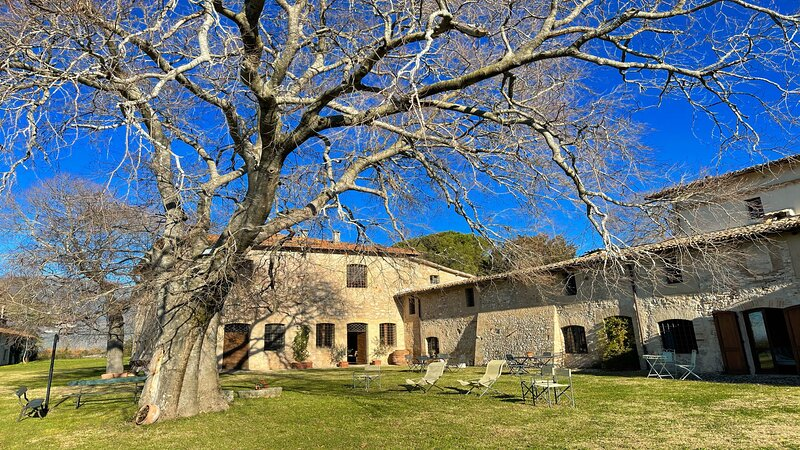 PORETA BIOFARM/SPOLETO 5 KMS/SLPS 8/PETS ALLOWED/ROME 1 HR/EXC COTTAGE + GROUNDS, vacation rental in San Giacomo
