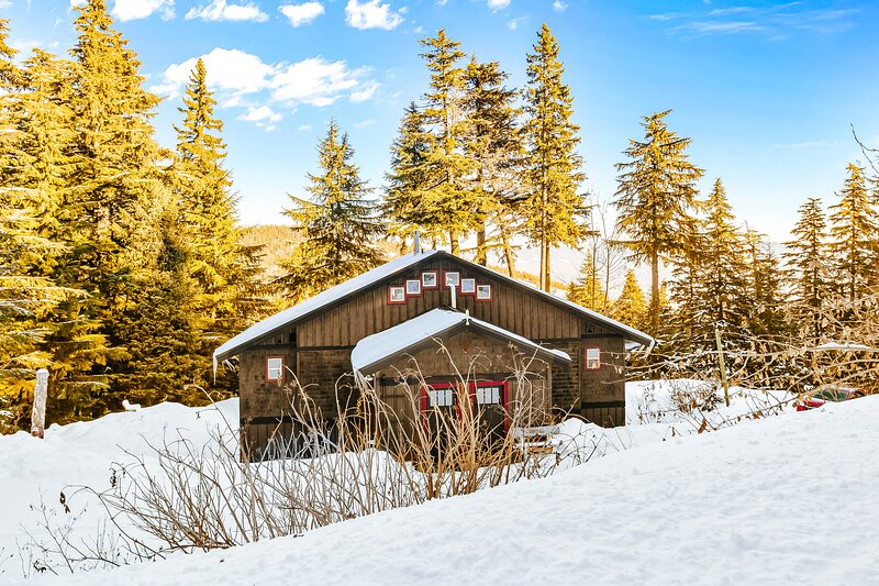 Schweitzer Mountain getaway w/ a private hot tub & easy ski slope access, casa vacanza a Colburn