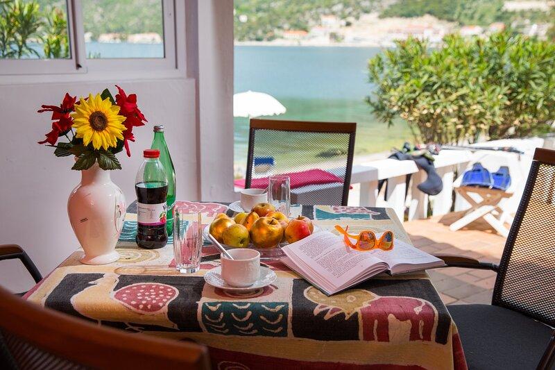Seaside Studio - Studio Apartment with Private Beach and Sea View, casa vacanza a Stikovica