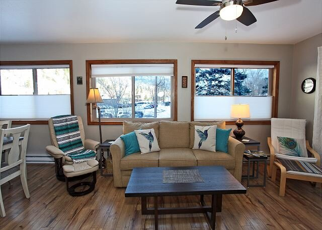 Updated Townhome - On the Uncompahgre River - Pet Friendly, location de vacances à Ouray